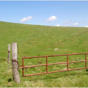 愛知県内の避暑地に最適かも!【茶臼山高原】シーズンオフの牧場風景