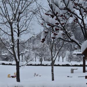 ラストスパート「冬」