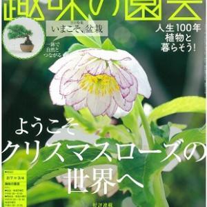 NHKテキスト「趣味の園芸」2月号に掲載されました