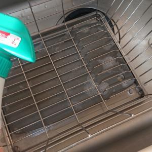 水切りかごのお掃除とまたバッタが…!