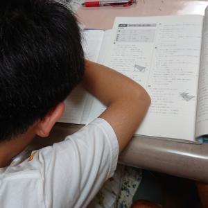 【中学受験】塾のプリント管理はお子さんが自分でできます!