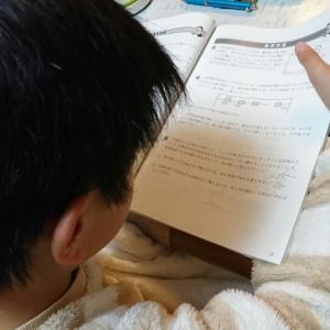 泣きながら宿題