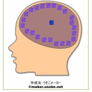 あなたの脳の中を見てみよう