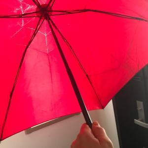 我が家の世代交代〜ブランド傘から実用傘へ