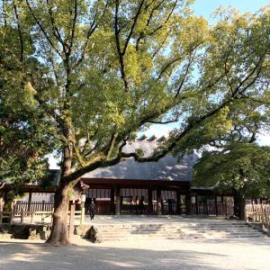 日帰り名古屋旅✨熱田神宮とケプスクモルモル