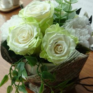 お花の種類(メーカー)について