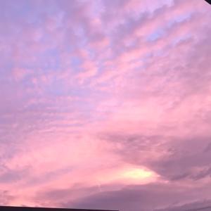 そろそろ台風くるかな、空がピンク 明石