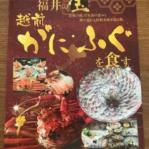 近畿日本ツーリスト 福井の宝 関西発 パンフレット 記事