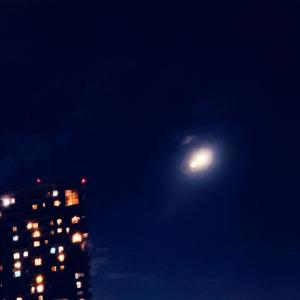 退院前夜はお月見です