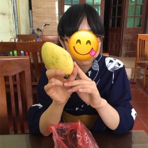 着物で海外旅行第二弾inベトナム〜2日目:ハノイ市内でアオザイオーダー