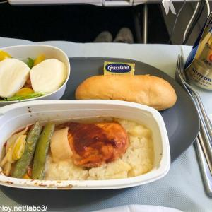 【Inflight meal 】DL デルタ航空 DL181 ホノルル ー 成田 HNL – NRT エコノミークラス機内食 2020 feb.