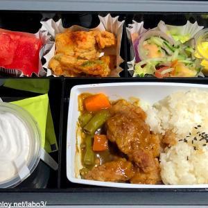 【Inflight meal 】PR フィリピン航空 PR424 マニラ ー 羽田 MNL – HND エコノミークラス機内食 2019 Jan.