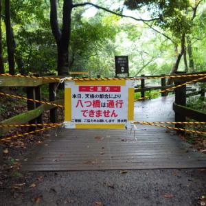 台風19号接近前の柿田川公園