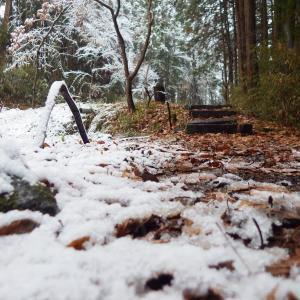 静岡県にある雪の国