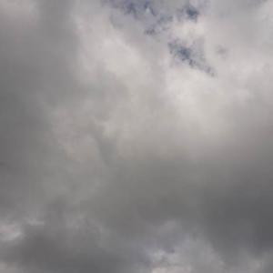 今日の北九州市は強風と曇り