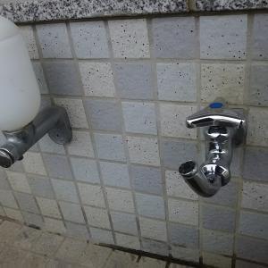 エコー&尿検査