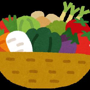 サツマイモ「甘くておいしいです。栄養あります。育てやすいです。野菜なのに子供も大好きです」