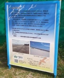稲毛海浜公園:白い砂浜? 2020年7月31日