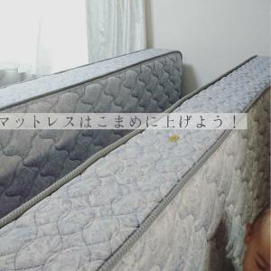 寝具を天然素材のものに( *´艸`)