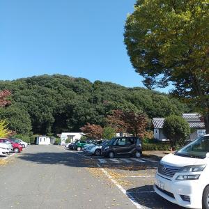 教科書に載ってます「岩宿遺跡」