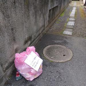 所定の場所にゴミは捨てましょう!!
