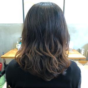 必ず『美髪』になれます!
