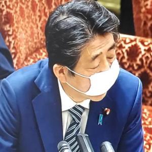 国会でもマスク論争で