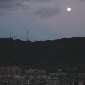 中秋の名月(翌朝)