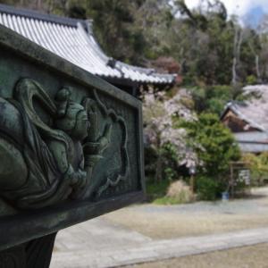 山崎聖天 桜