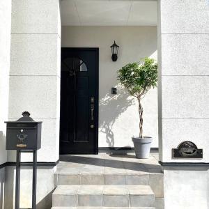 玄関ポーチに常緑樹シンボルツリーを設置。植物の陰影を楽しむ外観に変身