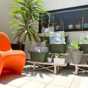 コスパの高いカインズの日本製フラワースタンドで家庭菜園が快適になった