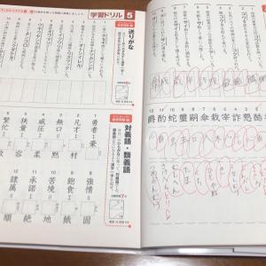 漢検準2級 #8【 184日目 】