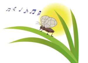 春に続き,夏休もスイミング短期講習に行ってきました!