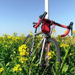 ブルベのダメージを癒やすためにまったりサイクリング