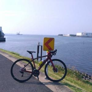 灼熱の江戸川往復サイクリング