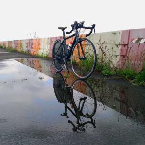 雨が止んだので関宿城往復