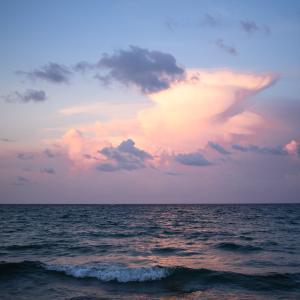 フロリダという名の天国から帰ってきました