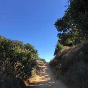 Tuna Canyon Parkをハイキング
