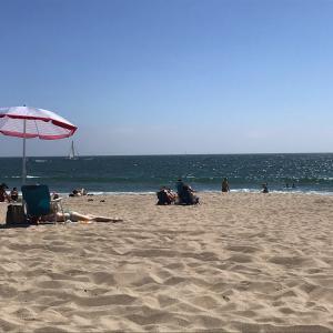 8月の涼しいビーチ