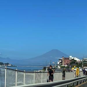 鎌倉と鶴岡八幡宮と海沿いドライブ