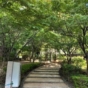 紀尾井町を散歩しつつ、LA元カレに思いを馳せ、気候変動を憂う