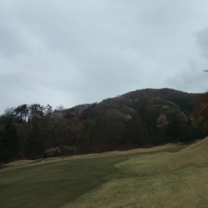 桜の綺麗なゴルフコース