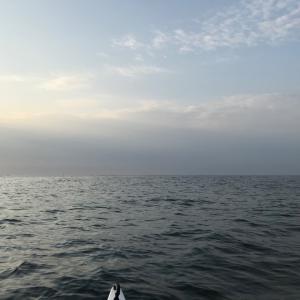 第175回 海って良いね
