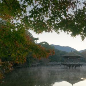 奈良公園の朝