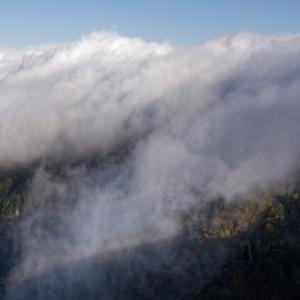 大台ケ原 ~雲が流れる