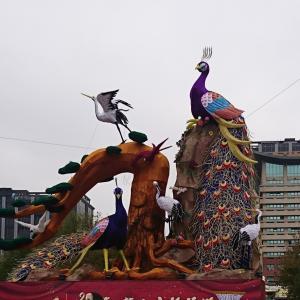 鳥の国へ旅立つカイヌシと居残りまめむ 台湾鳥的スポットとペットシッター編③