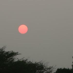 我が街中歩・打上川治水緑地より見る太陽