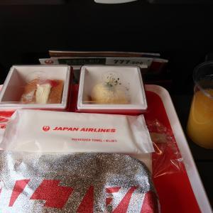 JAL093便:羽田~金浦の機内食!チキンカレー。