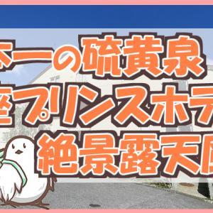 日本一の硫黄温泉で最高の星空を!万座プリンスホテル宿泊記&高原ホテル石庭露天風呂