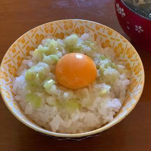 玉子かけごはん(*^▽^*)万能塩ネギレシピ♪
